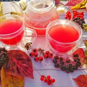 Иван-чай с плодами шиповника, калины и чёрной рябины