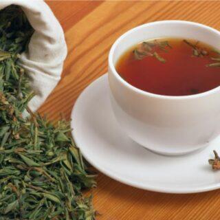Иван-чай c саган-дайля
